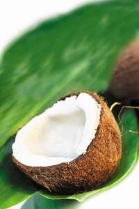 Coconut Oil: The Healthiest Oil On Earth | Good News Everyday!