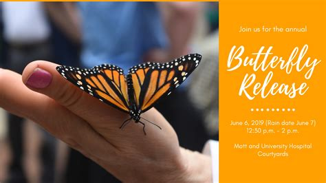 Have high-flying fun at upcoming butterfly release ...