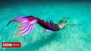 Mermaids Compete In  U0026 39 Merlympics U0026 39  Event