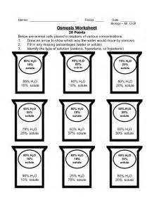 Diffusion And Osmosis Worksheet Answers Photos - Beatlesblogcarnival