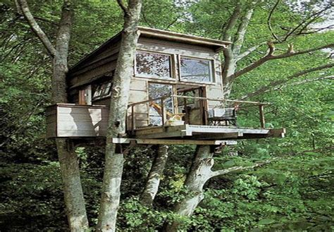 tree house designs simple treehouse design ideas for