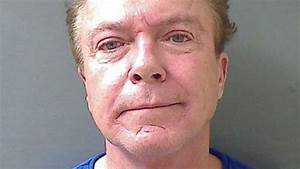 """Actor David Cassidy, of """"Partridge Family"""" Fame, Charged ..."""