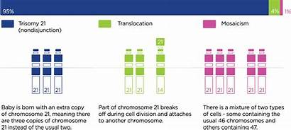 Syndrome Down Types Trisomy Nondisjunction Incidence Sa