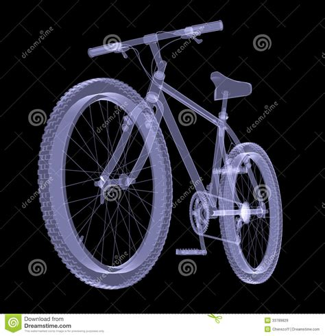 Bicycle Bicycle X Ray