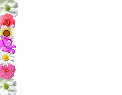 flowers borders designs page border designs for projects with flowers cliparts co