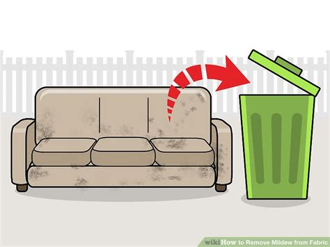How To Clean Mildew From Fabric Sofa Thecarpetsco
