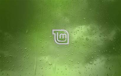 Lenovo Linux Mint Wallpapers