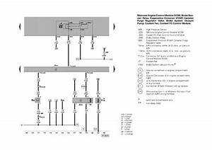 Ecm Wiring Diagram 2004 Vw Touareg  Parts  Auto Parts