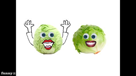 matt banhams jokes  cabbage  lettuce  mattbanham