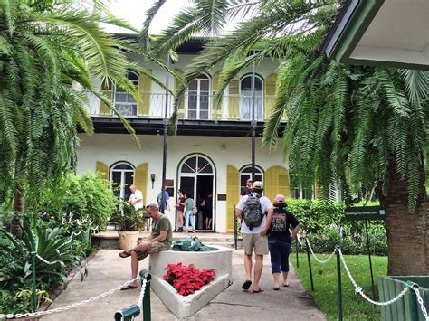 A Catalude at the Hemingway House in Key West   Elizabeth