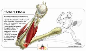 Elbow Injuries In Baseball