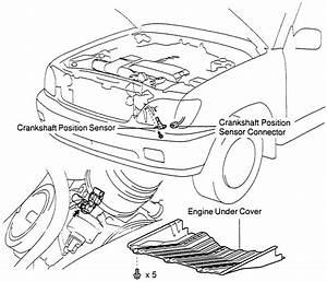 Hall Effect Crankshaft Position Sensor Wiring  Hall  Free