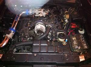 2000 Mustang Gt Fuel Pump Wiring Diagram   40 Wiring