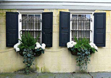 gorgeous window box ideas  spring