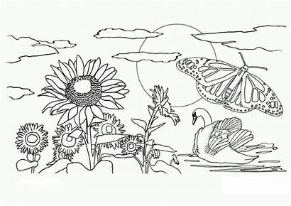 Scenery Drawing Natural Simple Getdrawings