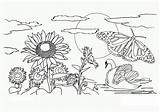 Coloring Nature Pages Printable sketch template