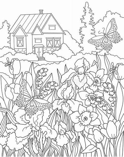 Coloring Garden Secret Adults Tulip Colouring Fairy