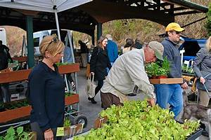 Becoming Vendor Saratoga Farmers Market Local Produce ...