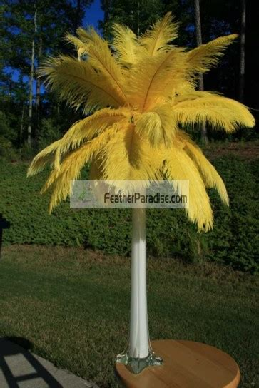 feather plume palm tree wholesale yellow ostrich feather