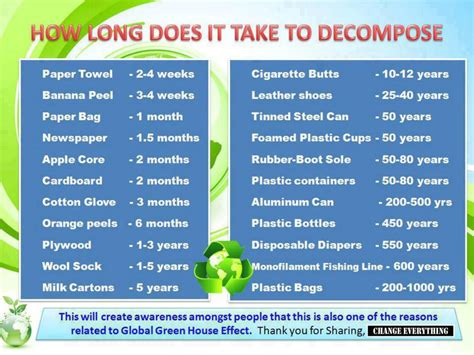 How Long Does It Take To Decompose?  The Science Cookie Jar
