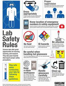 Lab Safety Riles - great for reminding students about how ...