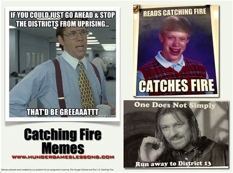 Catching Fire Meme - hunger games lessons meme assignment your students will love