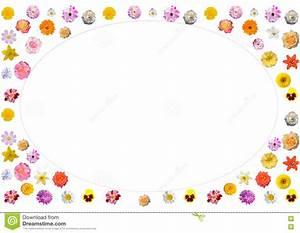 Feestelijk Kader Van Kleurrijke Bloemen Stock Illustratie Afbeelding: 71318519