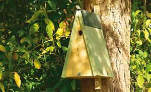 Futterhaus Für Vögel Selber Bauen : nistkasten meisen futterhaus nisthilfen bild 9 ~ Whattoseeinmadrid.com Haus und Dekorationen