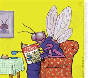 Fruit Fly Cartoon Reading a Book