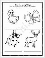 Coloring Worksheet Englishbix Blank sketch template