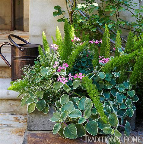 Picturesque Courtyard Garden by Picturesque Courtyard Garden Traditional Home