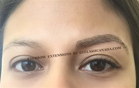 eyelashcanada offers eyebrow extensions  toronto