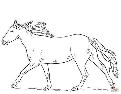 running horse coloring page  printable coloring pages