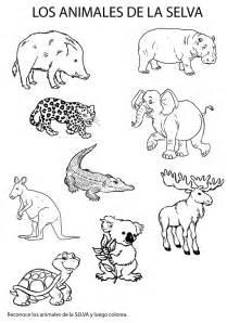 imagenes de animales de la selva  colorear
