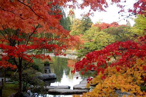 image gallery japanesegarden