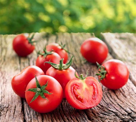 cuisiner tomates astuces de cyril lignac comment cuisiner les tomates
