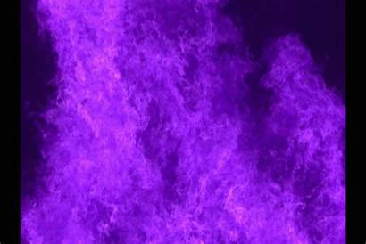 Purple Flame Violet Anime Challenge Flowers Take