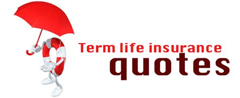 term insurance quotes insurance policy information naturescolours
