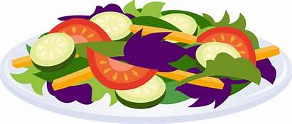 Salad Clipart Clip Salads Cliparts Plate Vegetables