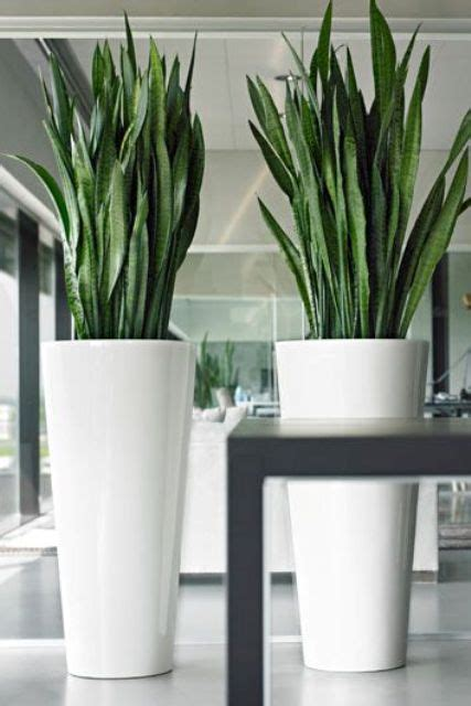 Large White Decorative Vases by 24 Floor Vases Ideas For Stylish Home D 233 Cor Shelterness