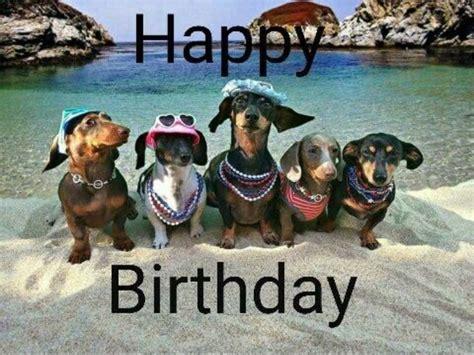 Dachshund Birthday Meme - dachshund birthday meme 28 images happy birthday dachshund puppy dog card zazzle dachshund