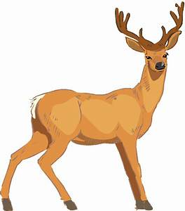 Baby Deer Clip Art - Cliparts.co