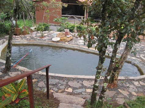 Farming In Your Backyard by Small Backyard Tilapia Farming Design Ideas How To