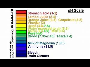 Chemistry - Acids & Bases Fundamentals (13 of 35) pH ...