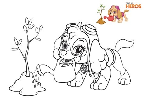The Gallery For > Paw Patrol Coloring Pages Everest