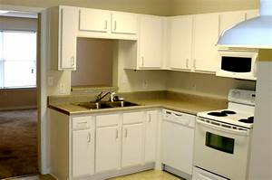 New color small apartment kitchen design modern kitchens for Apartment kitchens designs