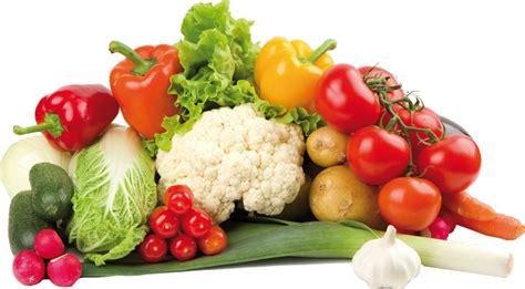 cuisine fenouil les fruits et légumes autoriser pour les calopsittes