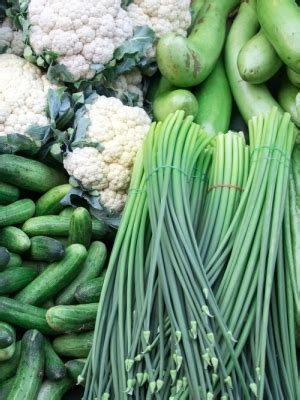 benefits system alleges sprouts violates sec regulations