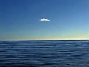 Cartoon Ocean