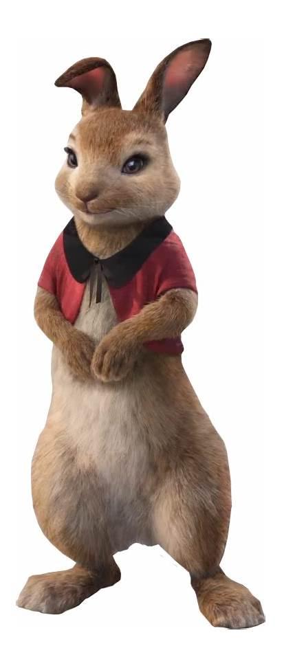 Flopsy Rabbit Wiki Wikia Sony Animation Fandom